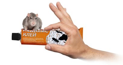 kley_mediret_hand_rat.png (83 KB)