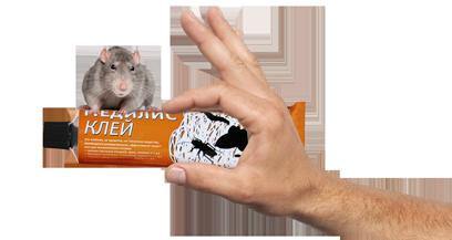 kley_mediret_hand_rat.png (83 KB)