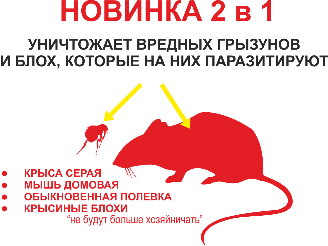 krisa_kombi.png (115 KB)