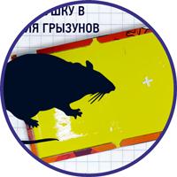 kleevaja_lovushka.png (49 KB)