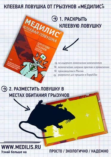 kleevaya_lovushka_reklama.jpg (110 KB)